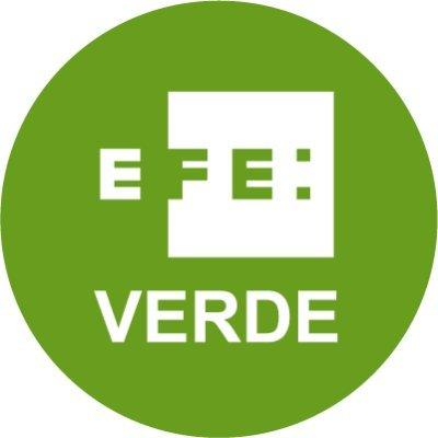 Logo EFE verde