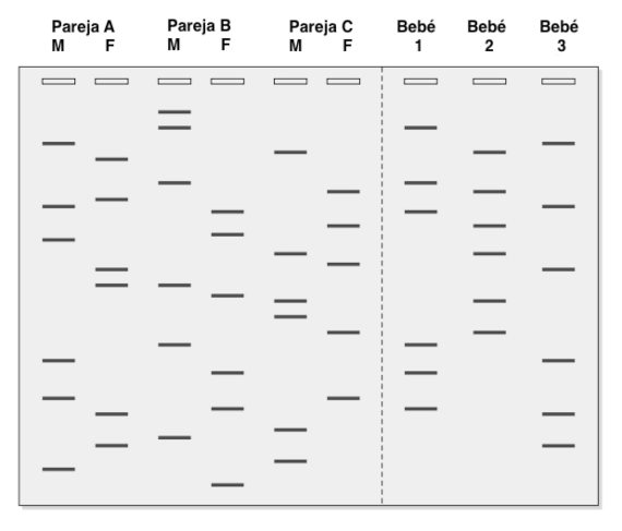BBVA-OpenMind-Materia-Miguel Barral-Huella genetica P3