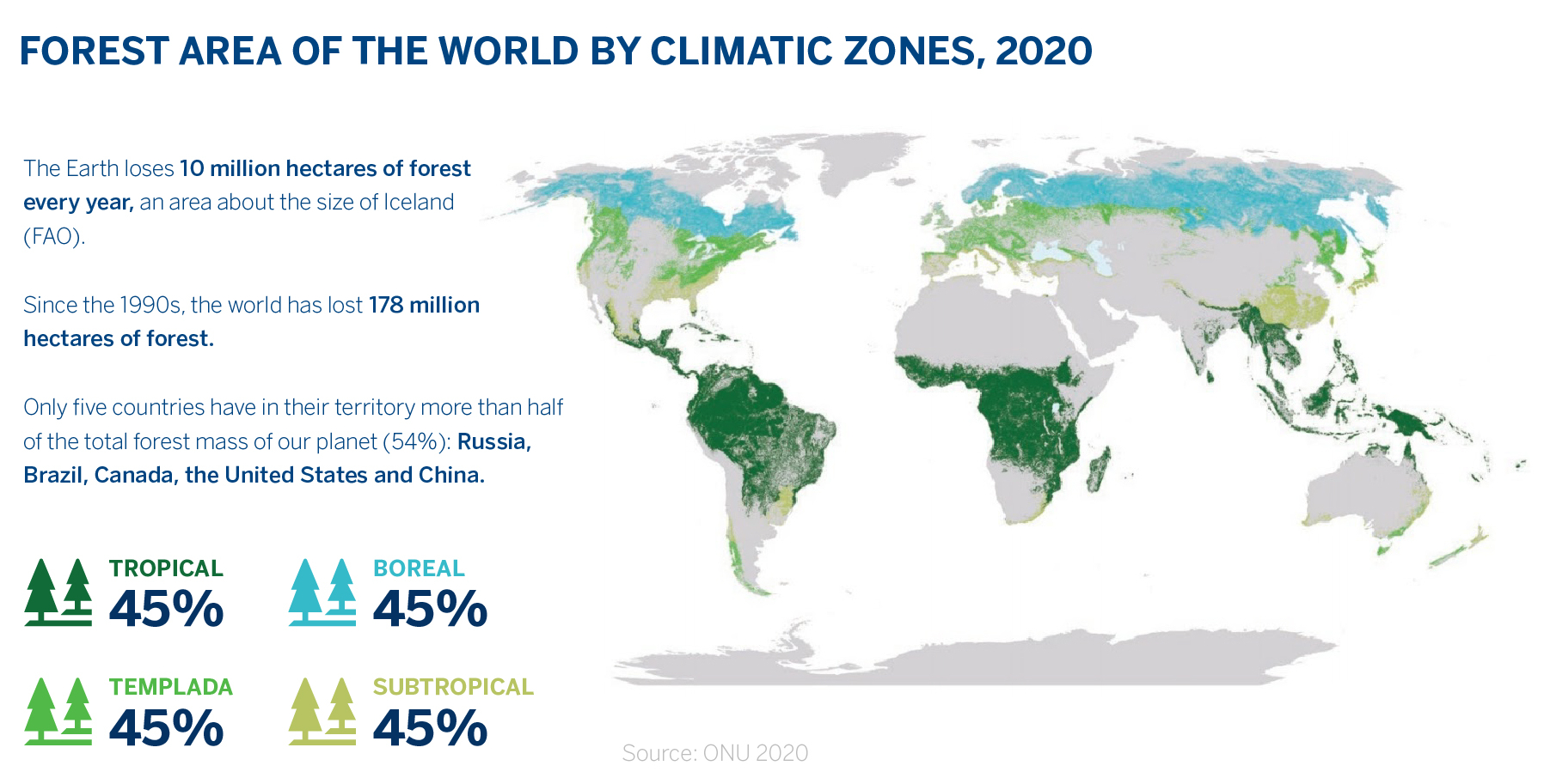 BBVA-OpenMind-Dory Gascuena-Forest area of the world by climatic zones 2020
