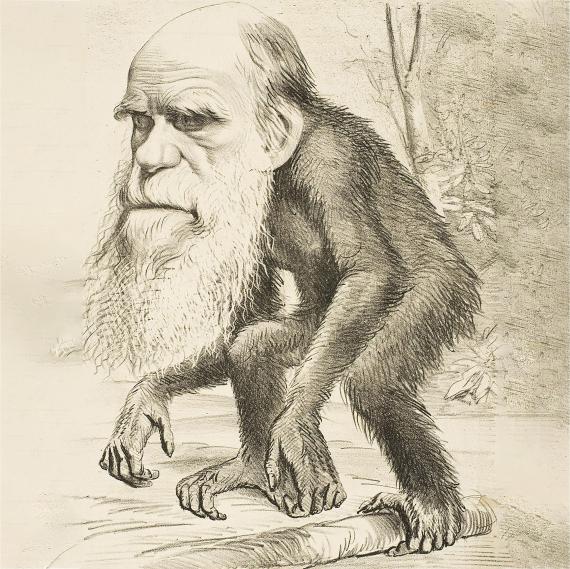 BBVA-OpenMind-Materia-El Darwin más incomprendido-Venimos del mono- 2- Una caricatura de Charles Darwin como un simio publicada en The Hornet, una revista satírica. Fuente: Wikimedia