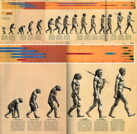 BBVA-OpenMind-Materia-El Darwin más incomprendido-Venimos del mono- 4-La ilustración March of Progress or The Road to Homo sapiens. Fuente: Wikimedia