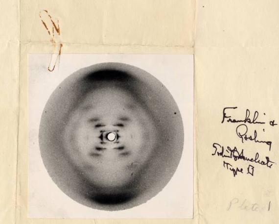 BBVA-OpenMind-Rayos x-Wilhelm Röntgen y los rayos que cambiaron nuestra visión del mundo 3 - Imagen de rayos X de la doble hélice del ADN, tomada en 1952 por el estudiante Raymond Gosling under the supervision of Rosalind Franklin. Crédito: Raymond Gosling/King's College London