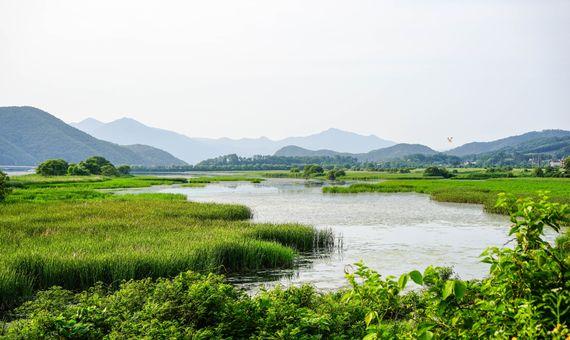 BBVA-OpenMind-Metano-gran amenaza del cambio climático- 3- Científicos ambientales estudian ecosistemas como los humedales y su contribución a las emisiones de metano. Crédito: James Park